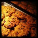 oatmeal cookies - Jammie040.nl